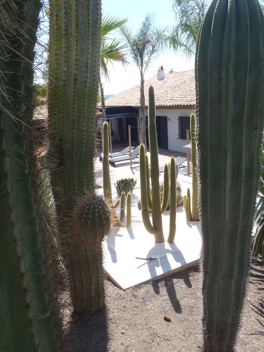 jardin golfe de saint-tropez